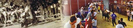 Encierros durante las fiestas, ayer y hoy. Bienvenidos a la 1ª página NO OFICIAL de Humanes de Madrid, Humanesdemadrid.com, Humanes Madrid
